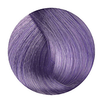 Purple lilla